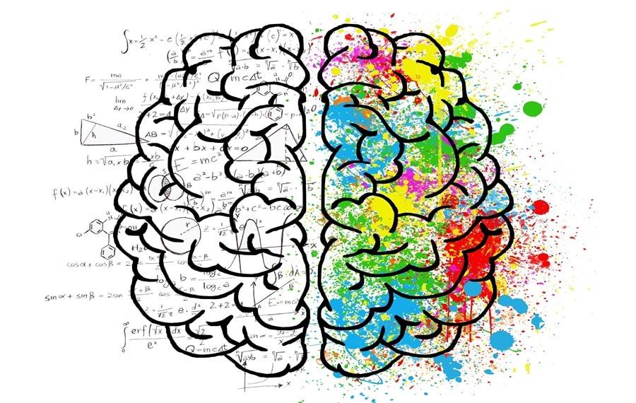 oś jelito-mózg